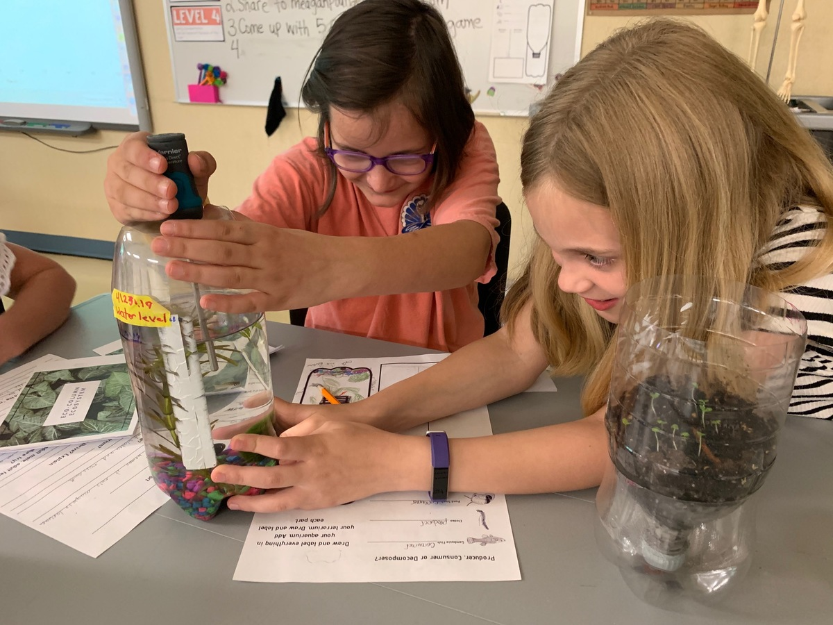 3rd Graders Build Eco-Systems